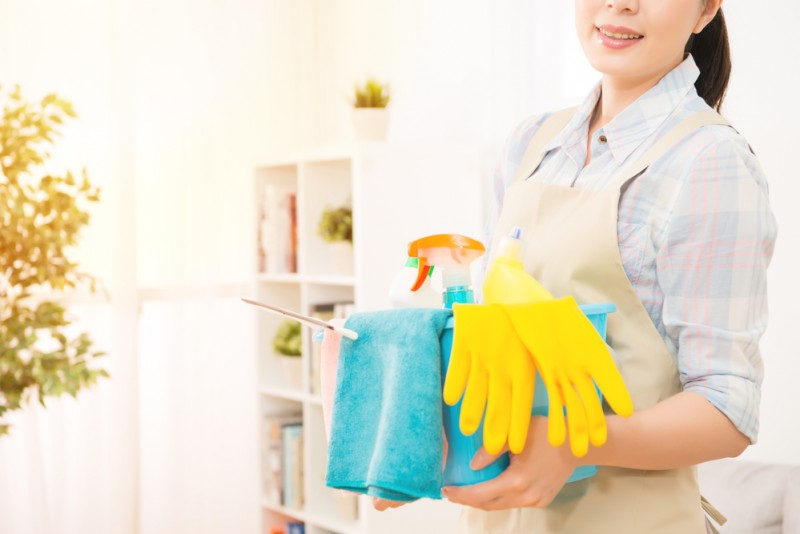 Smiling housemaid ready for cleaning