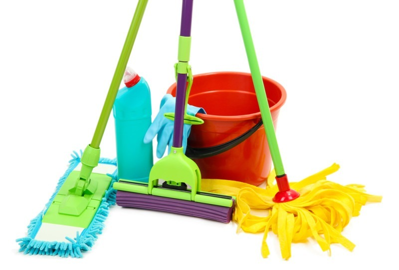 Everything You Wanted to Know About Mops (But Were Afraid to Ask)!