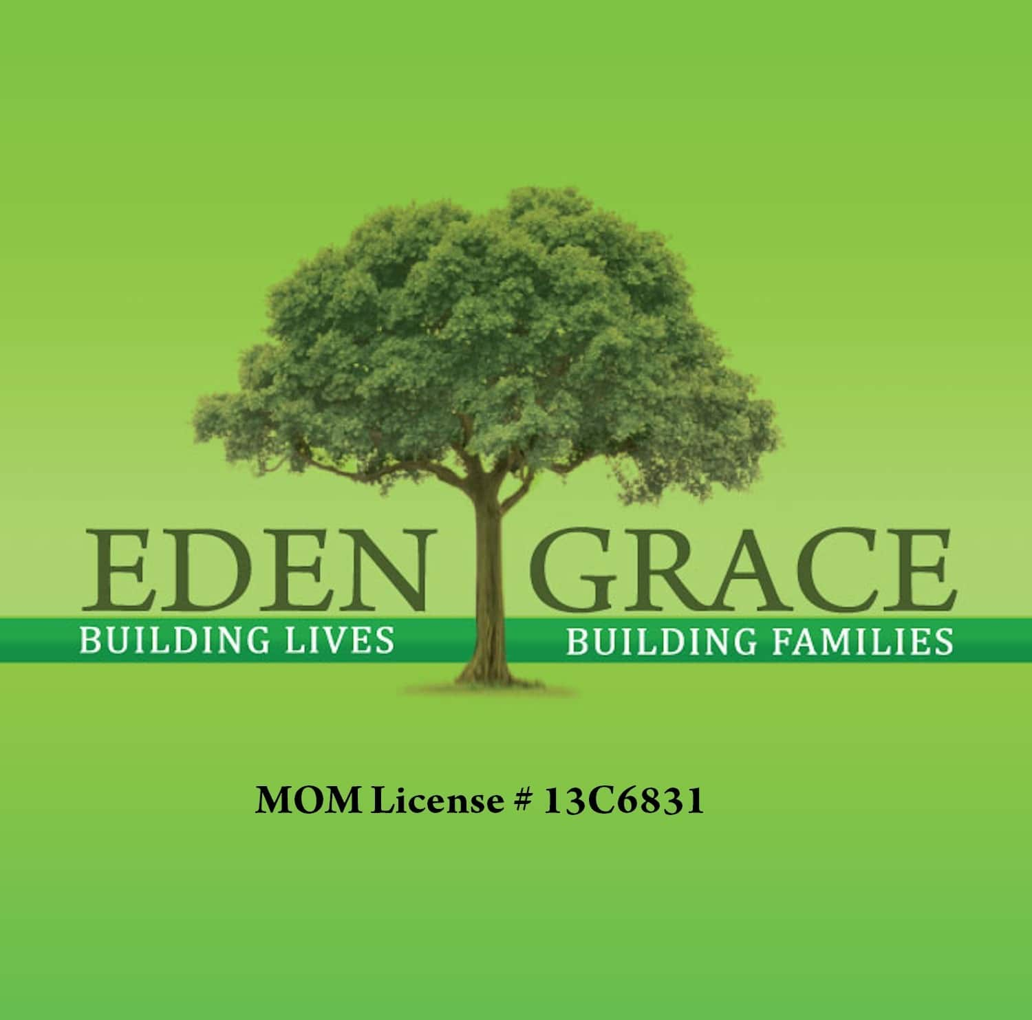 EDEN GRACE HR SOLUTIONS & MAID AGENCY - ORCHARD