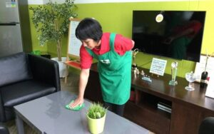 Maid Agency Singapore - Indonesian Helper